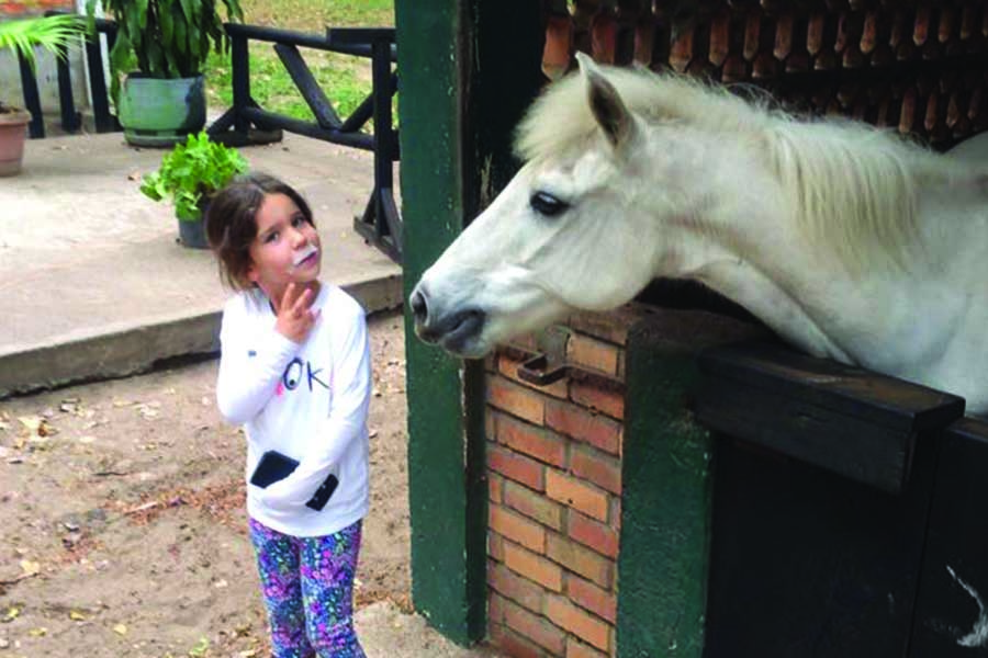chk-chevaux-box-_0005_chevaux box 21034197_1975211012722389_7231441811631811716_n